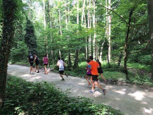 Calling All Trail Runners